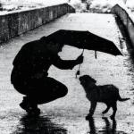 1人の破天荒な少年と、2匹の犬が教えてくれた人生で大切なこと