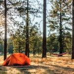 料理とキャンプと、夏の終わりと。